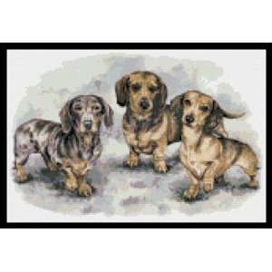 Dachshund Puppies Counted Cross Stitch Pattern: Everything
