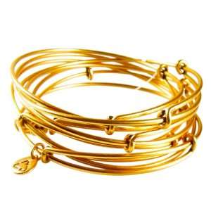 Alex and Ani  Russian Gold Set of 7 Expandable Wire Bangles Thick