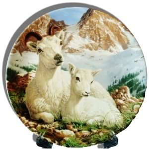 Dall Sheep Collectors Plate from The Beauty of Polar