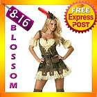 Aduly Thief Robin Hood Fancy Dress Costume Outfit hat Ladies LARGE 14