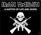 Iron Maiden Eddie Chrome car bumper sticker 3 x 5