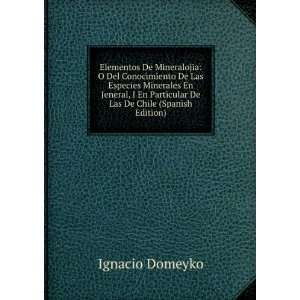 Particular De Las De Chile (Spanish Edition) Ignacio Domeyko Books