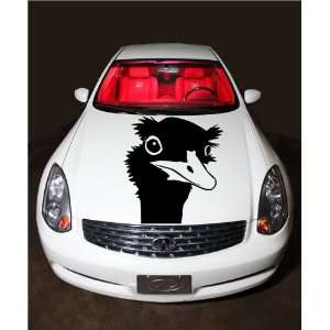 Ostrich Head Tribal Tattoo Flaming Design Hood Vinyl Sticker Decals