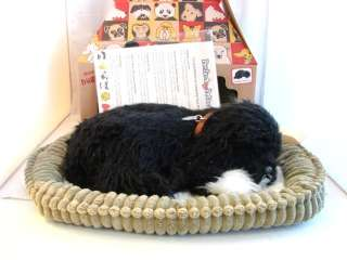 Perfect Petzzz Original Breathing Portuguese Water Dog