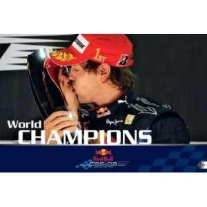 Red Bull Racing Formel 1 2011  Sebastian Vettel Bücher