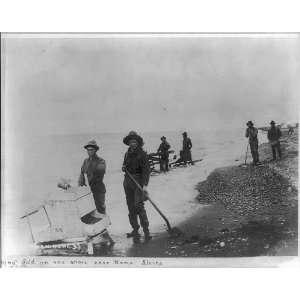 near Nome,Alaska,AK,1901 1903,shovels