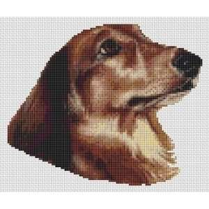 Longhaired Dachshund   Cross Stitch Pattern: Arts, Crafts