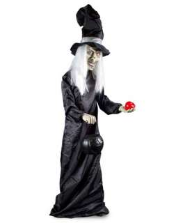Decorations  /  Animatronics  /  5 foot Animated Witch Prop
