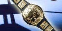 WWE Wrestling INTERCONTINENTAL Toy Action Figure BELT